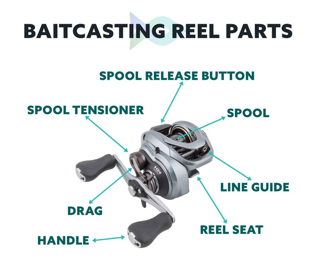 Baitcasting Reel Parts infographic