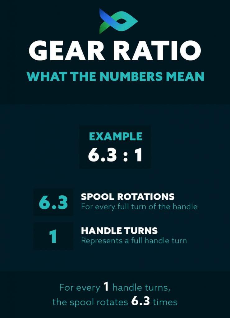 Gear Ratio Infographic