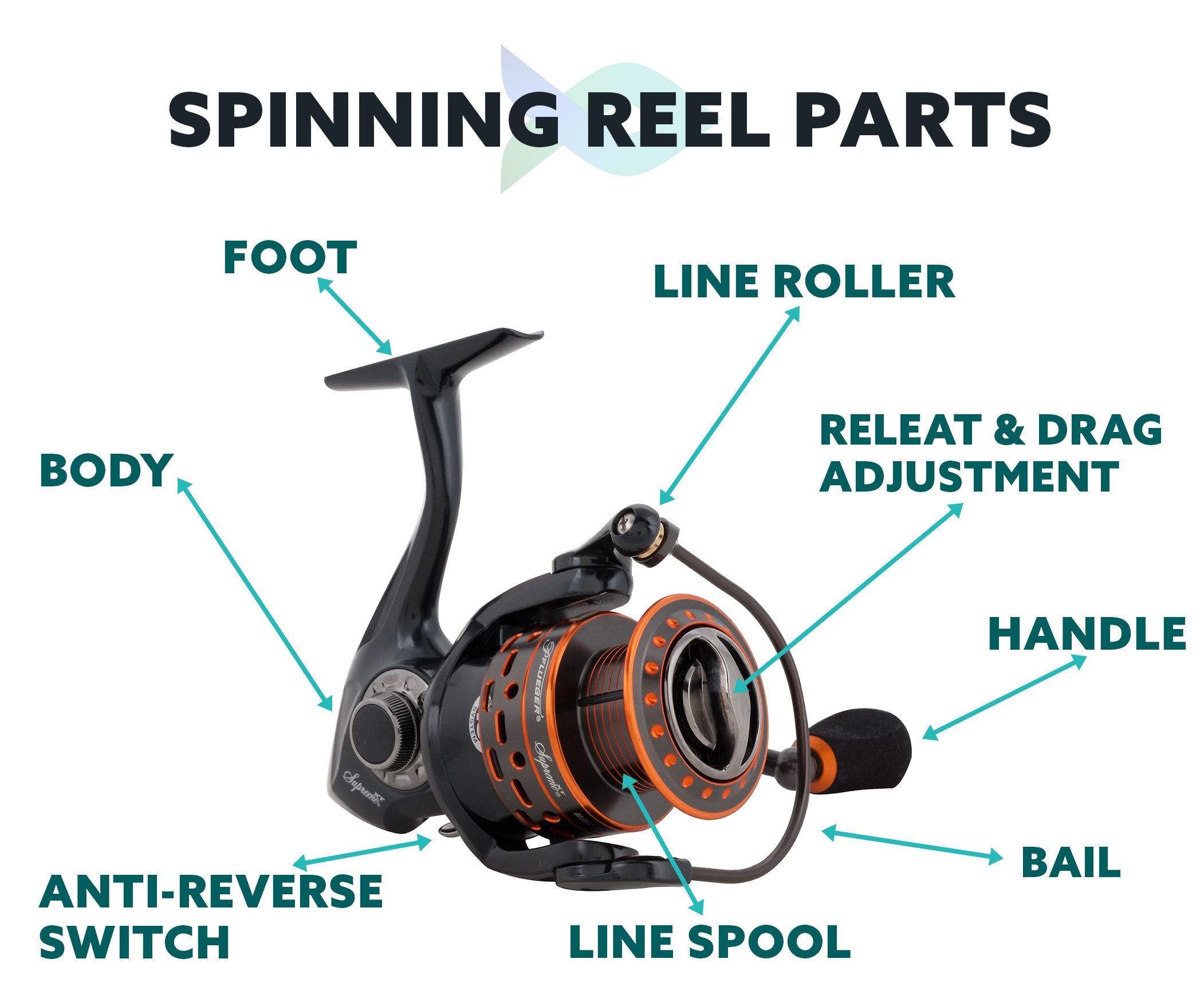 Spinning Reel Parts Infographic