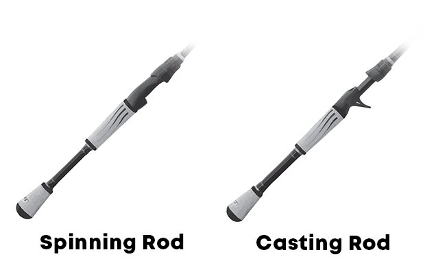 Casting Rod and Spinning Rod Compared