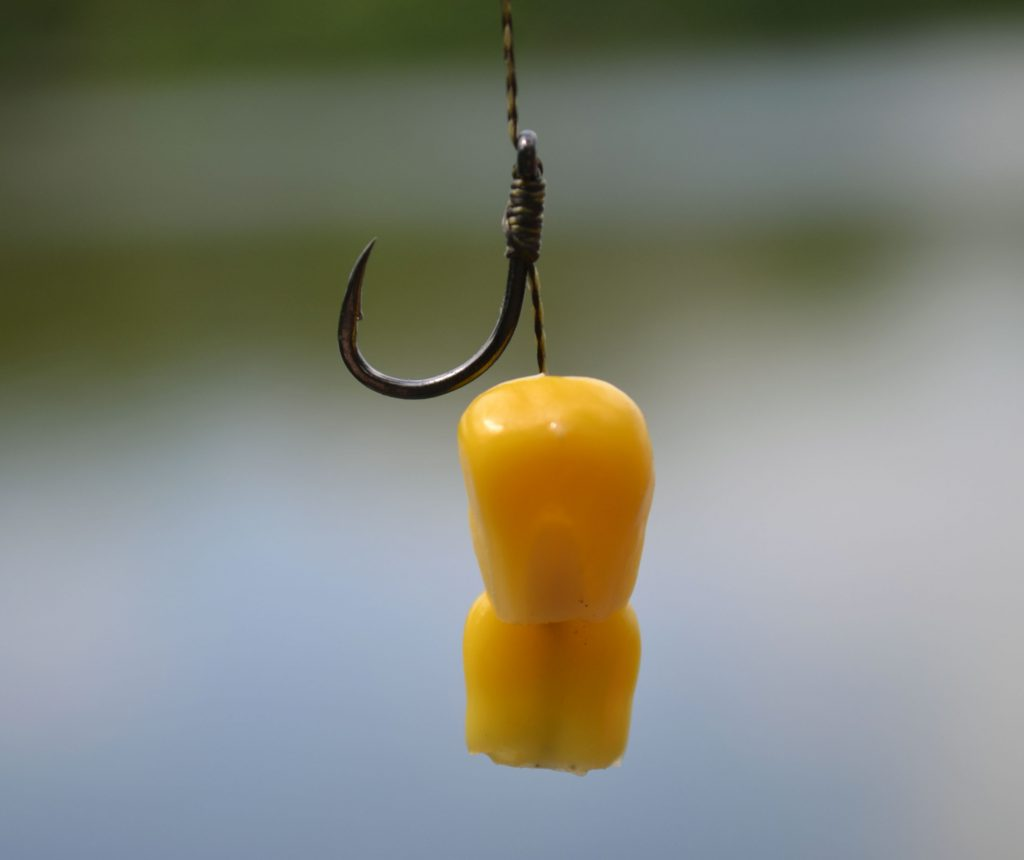 Corn bait with fishing hook