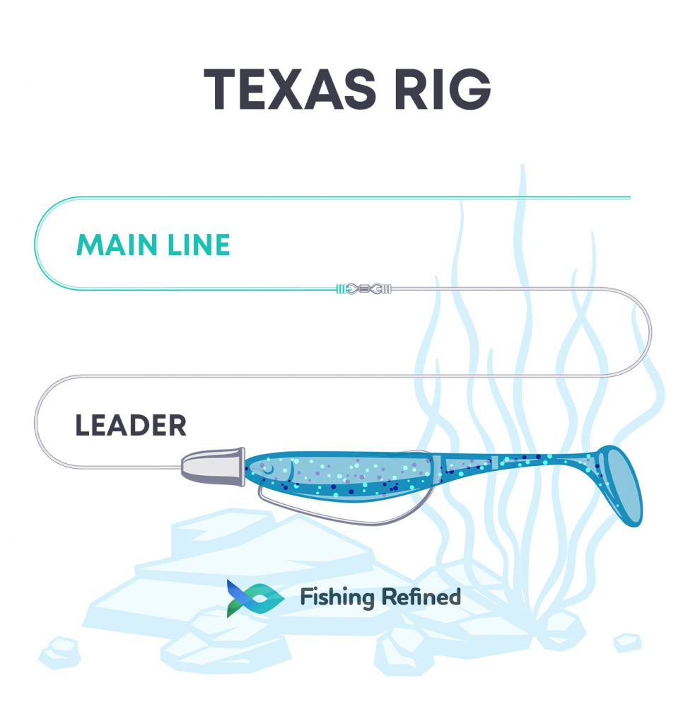 Texas Rig Worming Guide Infographic
