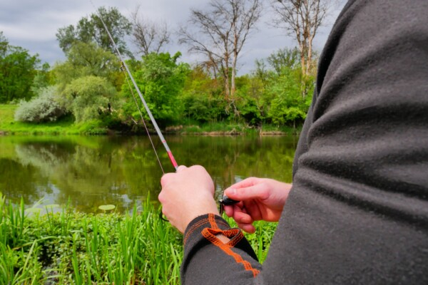 Fisherman is fishing on a spinning. Fisherman's hands with a fishing rod.